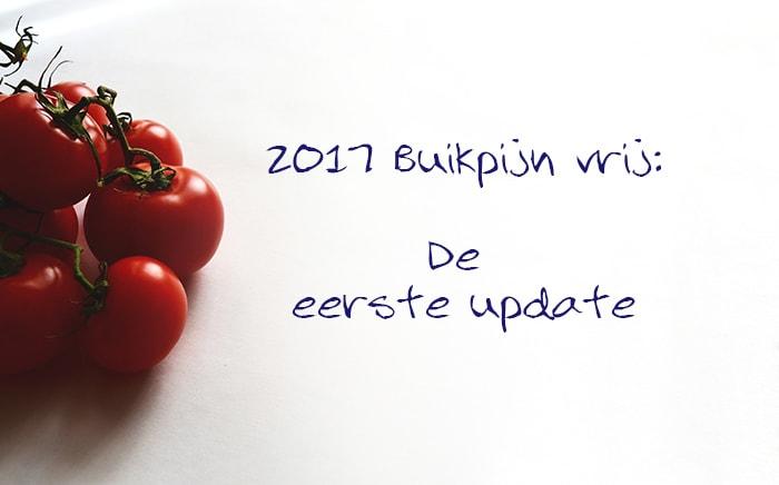 2017 buikpijn vrij update - karlijnskitchen.com
